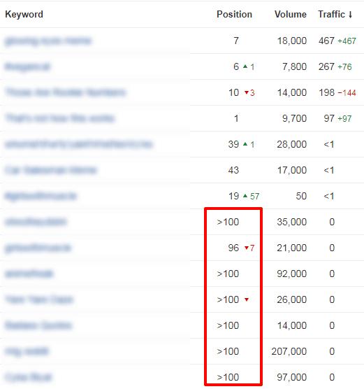 niche site rankings pic