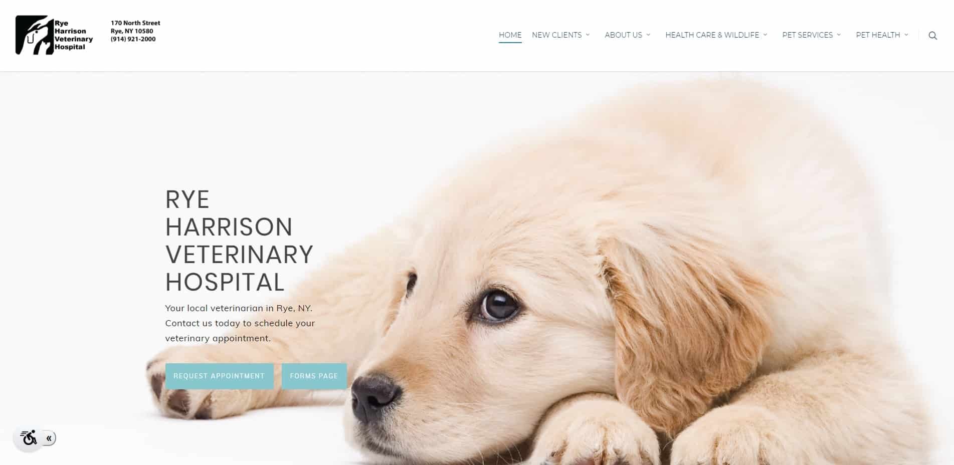Rye-Harrison-Veterinary-Hospital-Rye-Harrison-Veterinary-Hospital