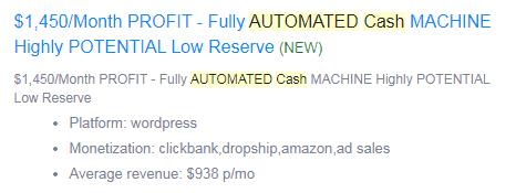 flippa spammy listing