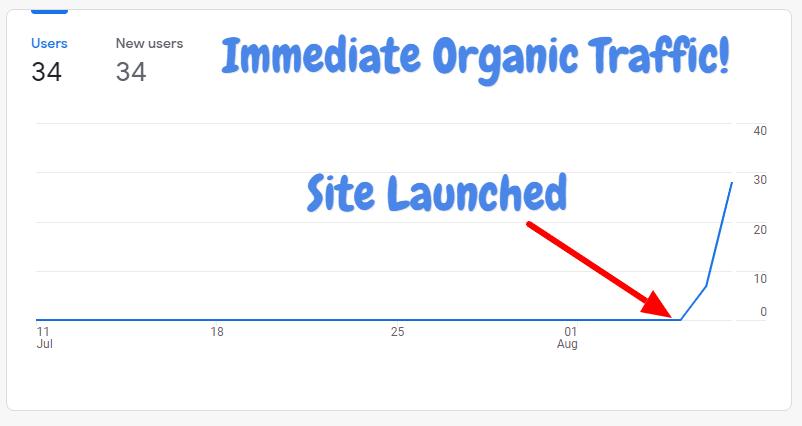 new site immediate organic traffic